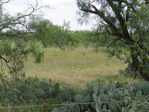 Mustang Creek 39 : Eden : Concho County : Texas