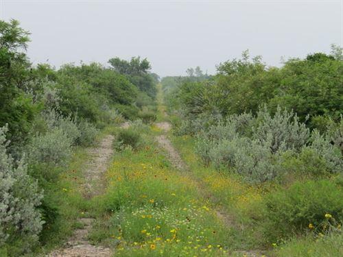 Dos Senderos 1 - 11.2 Acres : Brackettville : Kinney County : Texas