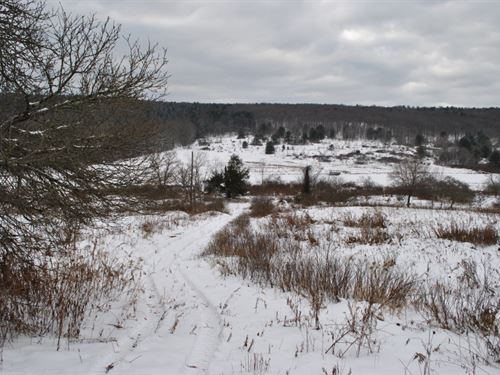 89 Acres Farmland And Pasture : Barker : Broome County : New York