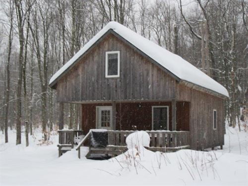 42 Acres Cabin Near Camden Ny : Annsville : Oneida County : New York