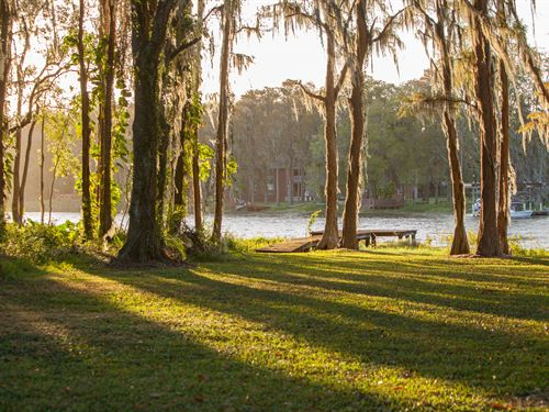 Ten Acre Lakefront In Lutz : Lutz : Hillsborough County : Florida