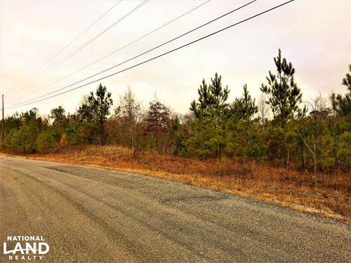 10.03 Acres Commercial Opportunity : Warrior : Blount County : Alabama
