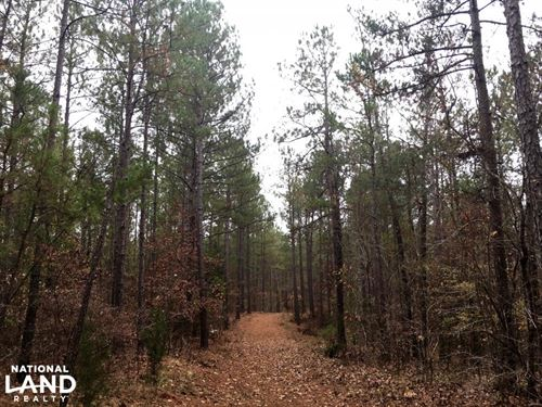 Lancaster Timber Investment And Hun : Lancaster : South Carolina
