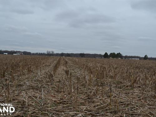 155+/- Acres Row Crop & Hunting Pro : Moro : Lee County : Arkansas