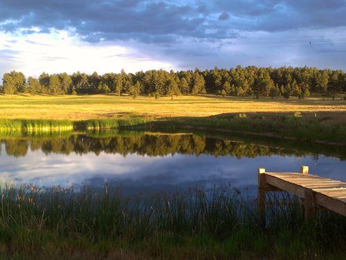 Wykota Ranch : Larkspur : Douglas County : Colorado