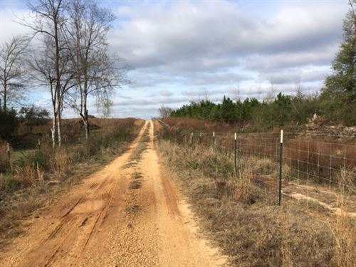 437 Acres Lawrence Co : Monticello : Lawrence County : Mississippi