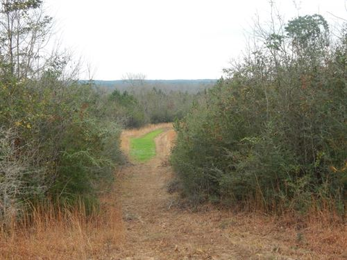48.5 Acres In Pike County : Summit : Pike County : Mississippi