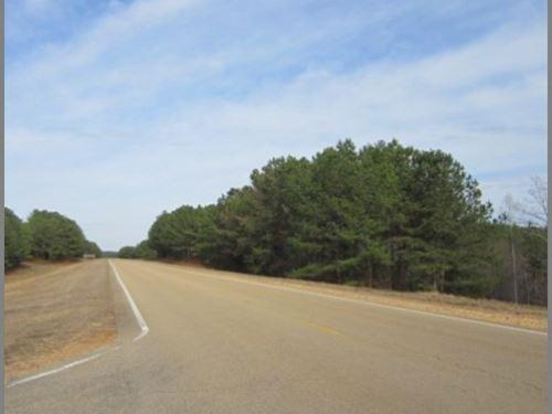 789 Acres In Tishomingo County : Dennis : Tishomingo County : Mississippi