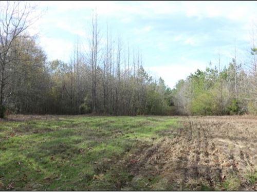 6.7 Acres In Neshoba County : Philadelphia : Neshoba County : Mississippi
