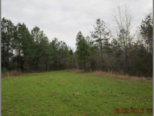 160 Acres In Benton, County : Ashland : Benton County : Mississippi