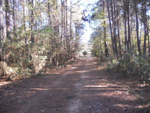 Home With Land Amite County Ms : Centreville : Amite County : Mississippi