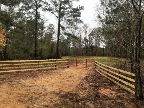 Hunting Land For Sale Amite County : Smithdale : Amite County : Mississippi