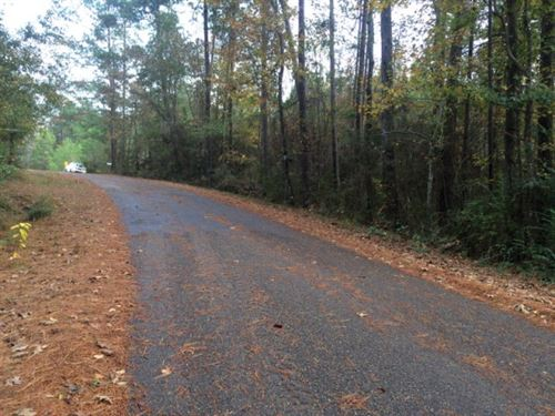 Land For Sale Pike County Ms : McComb : Pike County : Mississippi