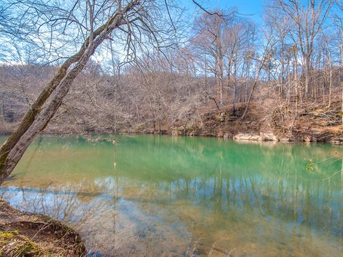 73 Acres On Swan Creek : Duck River : Hickman County : Tennessee