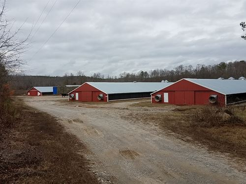 5 House Broiler Farm : Bowdon : Carroll County : Georgia