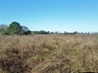 70 Ac Development Land - Make Offer : Clermont : Lake County : Florida
