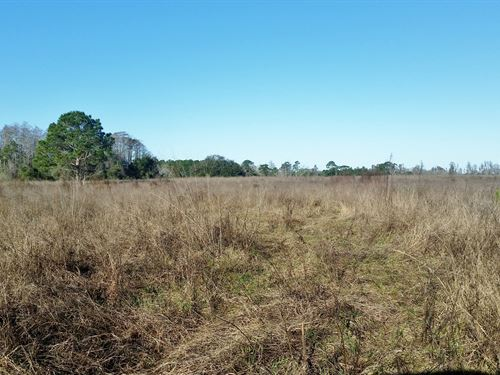 70 Ac Development Land - Make Offer : Clermont : Lake County : Florida
