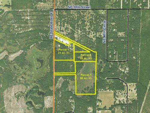 Oak Hill Parcel 6 : Trenton : Gilchrist County : Florida