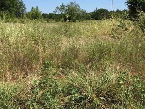 2 Lake Community Residential Lots : Eustace : Henderson County : Texas