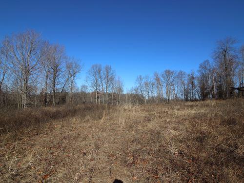 Cox Rd - 11 Acres : Crown City : Gallia County : Ohio