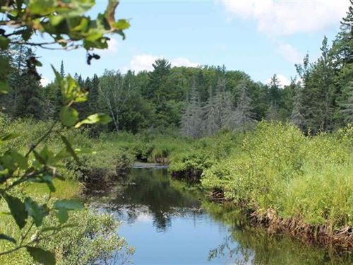 Peshekee River Beauty, 1099072 : Michigamme : Baraga County : Michigan