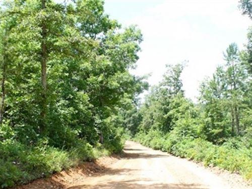 Missouri, Shannon County, 8.22 Acre : Winona : Shannon County : Missouri