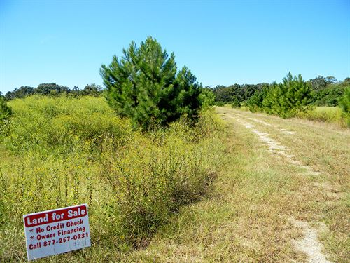 Beautiful Empty Lot At Golf Course : Trinity County : Texas