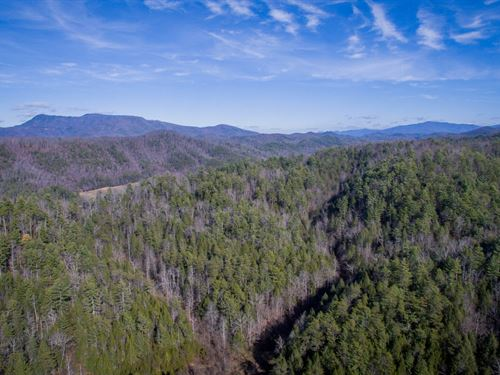 132 Acres Near Gatlinburg : Sevierville : Sevier County : Tennessee