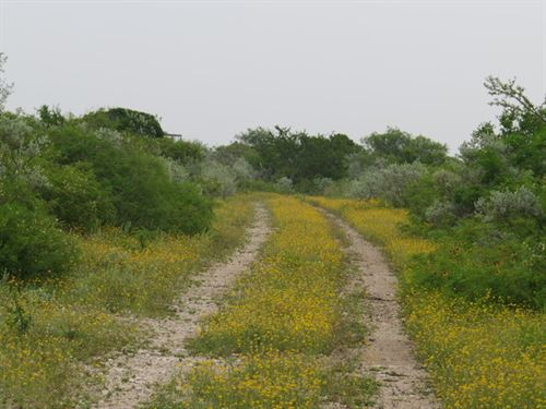 Dos Senderos Tr. 8 : Brackettville : Kinney County : Texas