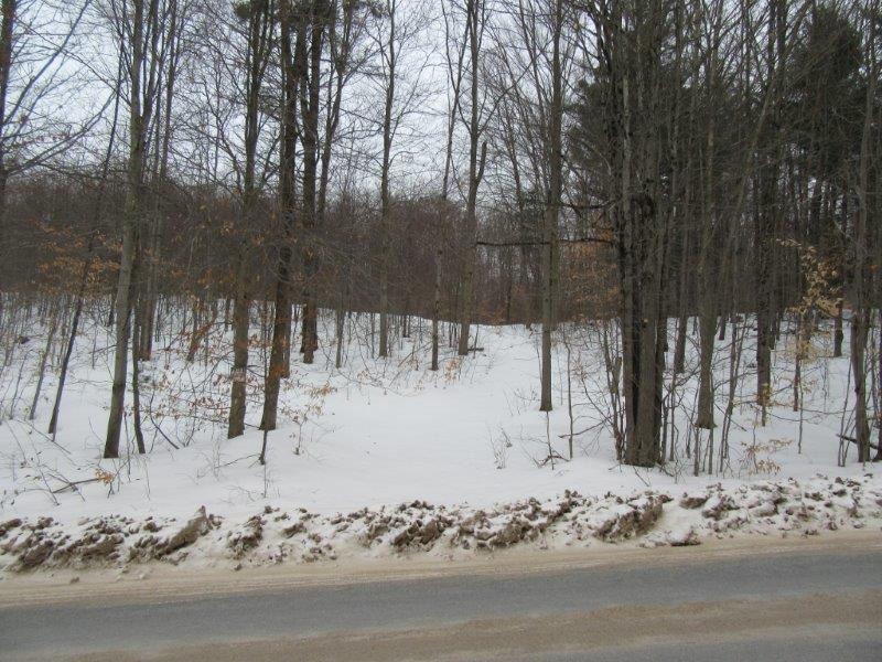 58 Acres Lyonsdale Ny Adirondacks : Lyonsdale : Lewis County : New York