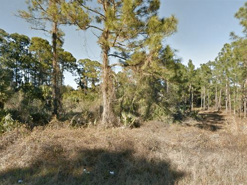 Small Canal Residential Lot : Lehigh Acres : Lee County : Florida