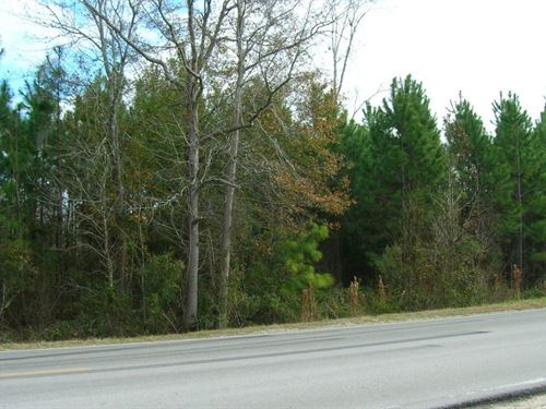 Tall Pines Parcel 6 : Starke : Bradford County : Florida