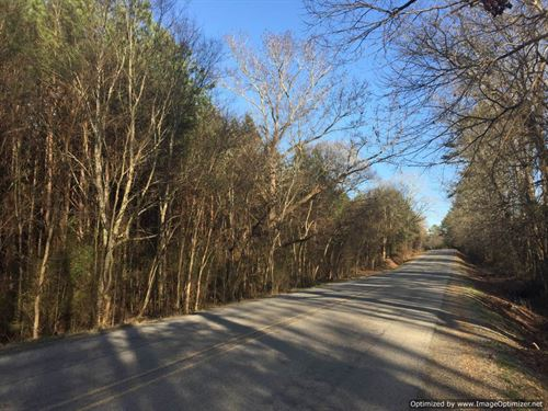 89 Ac Hunting/Timber Investment : Goodman : Holmes County : Mississippi