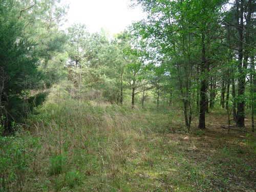 5 Ac Near Lake Oconee, Ez Finance : Greensboro : Greene County : Georgia
