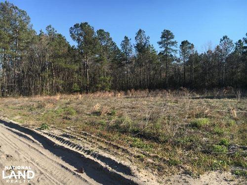 Johnson Family Farm Lot 1 : Loris : Horry County : South Carolina