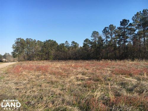 Johnson Family Farm Lot 2 : Loris : Horry County : South Carolina
