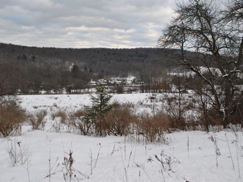 80 Acres Farmland Binghamton Ny : Maine : Broome County : New York