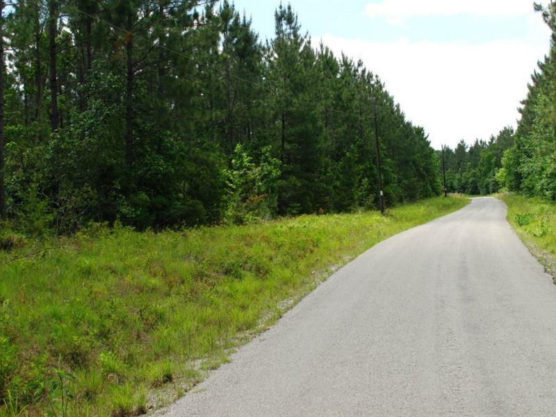 Harmony Pines Parcel 2 : Kinder : Allen Parish : Louisiana