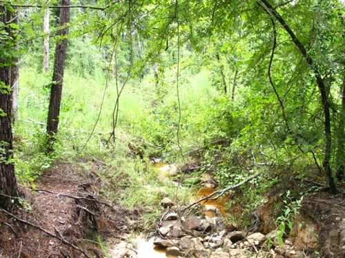 Black Jack Road : Goldonna : Natchitoches Parish : Louisiana