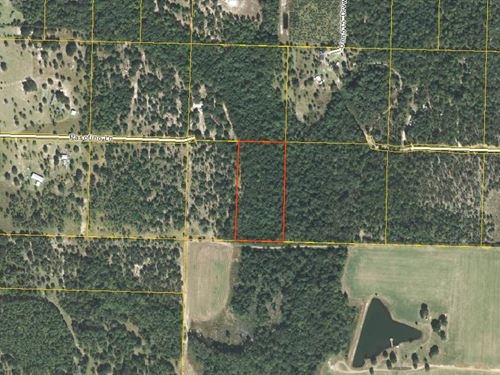 Vacant Acreage For Sale In Alford : Alford : Jackson County : Florida