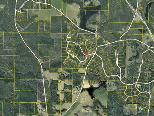 Vacant Acreage For Sale In Westvill : Westville, Fl : Holmes County : Florida