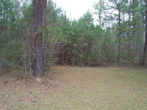 Acreage For Sale In Westville, Fl : Westville, Fl : Holmes County : Florida