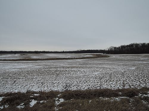 Land Auction - 260+/- Acres-7 Tract : Hartford City : Blackford County : Indiana