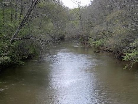116 Acres - Timber/Creek/Hunting : Alexander City : Tallapoosa County : Alabama