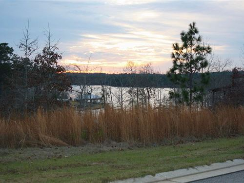 Perfect Big Bay Lake Lot : Lumberton : Lamar County : Mississippi