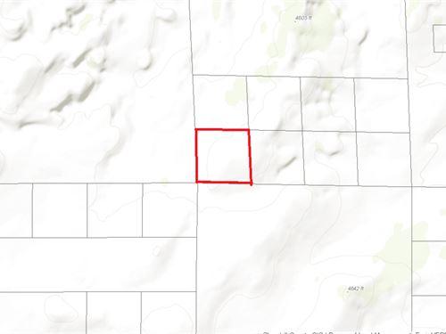 40 Acres Vacant Land : Fallon : Churchill County : Nevada