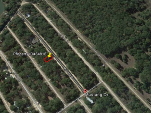 Parcel Adjacent To Cedar Creek : Mabank : Henderson County : Texas