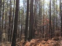 Moss & Henderson Mountain Road : Fairmount : Pickens County : Georgia