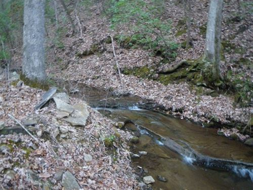 102+/- Acres With Views : Whitwell : Marion County : Tennessee