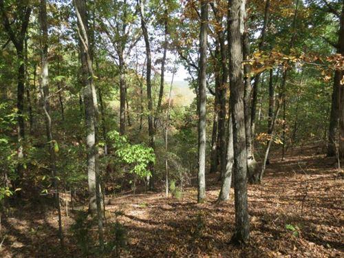 .94 Acre Lot In Tishomingo County : Iuka : Tishomingo County : Mississippi